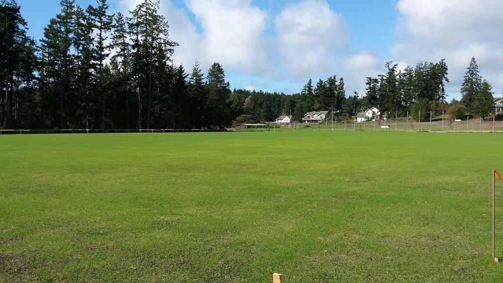 9.-Soccer-Field-Grass-Growing